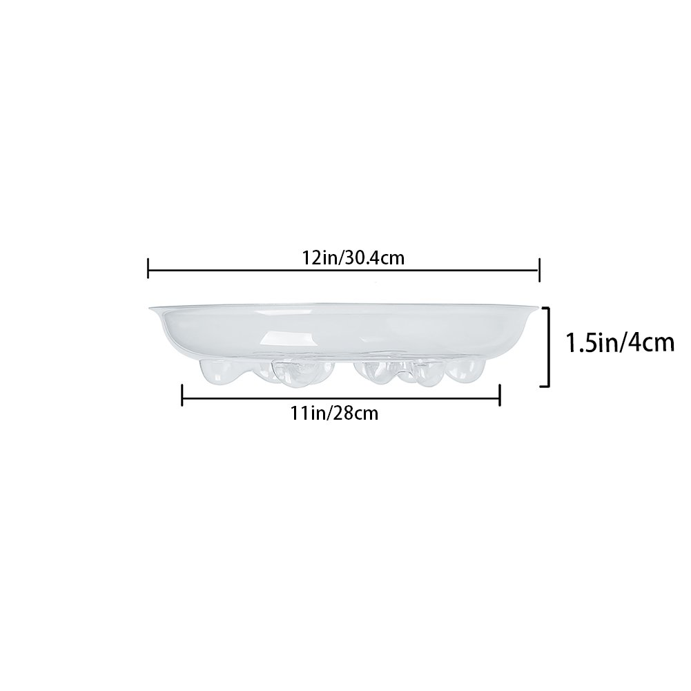 Plastic Plant Saucer Plus 5 Pack of 8 inch Heavy Duty Clear Plant Saucers OBSP8