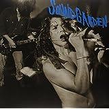 Screaming Life/Fopp (Vinyl)