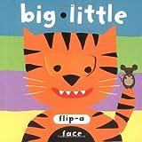 Big Little, SAMI Consulting Staff, 1593541643