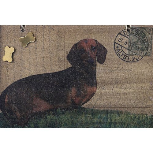 Dachshund Vintage Postcard Magnet Board by Bow Wow Home Decor