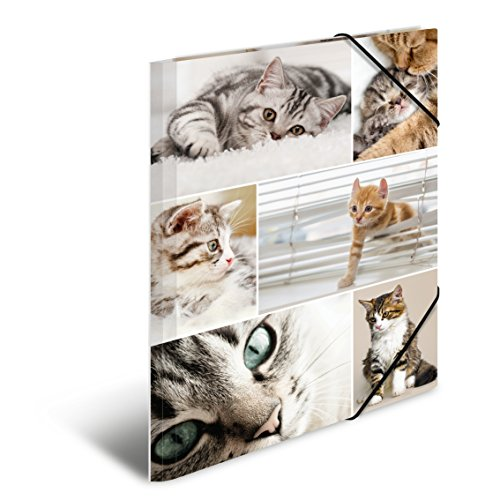 1 Span Folder HERMA Elastic Folder Animals with Cats Motif Glossy Plastic with Inner Print A3