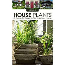 House Plants: A Guide to Keeping Plants in Your Home (House Plants Care, House Plants for Dummies, House Plants for Beginners, Keeping Plants in Your Home, DIY House Plants Book 1)