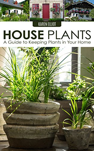 e to Keeping Plants in Your Home (House Plants Care, House Plants for Dummies, House Plants for Beginners, Keeping Plants in Your Home, DIY House Plants Book 1) (House Plant Care)