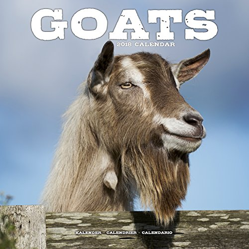 Goat Calendar - 2018