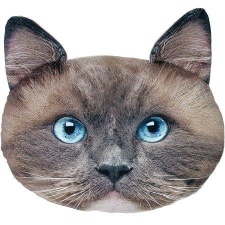 Cat Rag - 5