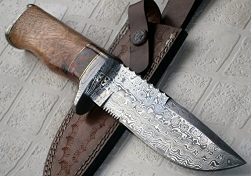 REG 16 C-FR Handmade Damascus Steel 11.00 Inches Bowie Knife – Exotic Wood Handle
