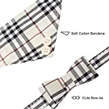 EXPAWLORER Bow Tie Dog Collar and Leash Set Classic Plaid Adjustable Dogs Bandana and Collars with Bell for Puppy Cats 3 PCS Beige M