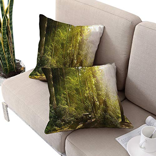 Brandosn Nature Square futon Cushion Cover,Sunny Rainforest with Wood Bench in Olympic National Park Washington USA Photo Green Yellow W24 xL24 2pcs Cushion Cases Pillowcases for Sofa Bedroom Car]()