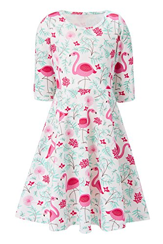 (8t 9t Schoolchild Leaves Comfy Dresses for Girls Half Sleeve Outdoor Comfy Dresses for Girls Springtime Feather Flower Conventional Flamingo Gifts (Flamingo, 8-9)