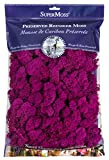 SuperMoss (23166) Reindeer Moss Preserved, Fuchsia, 8oz