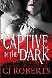captive in the dark platinum edition dark duet volume 1