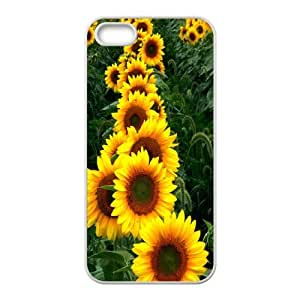 High Quality Phone Back Case Pattern Design 14Sunflower And Sun- For Apple Iphone 5 5S Cases