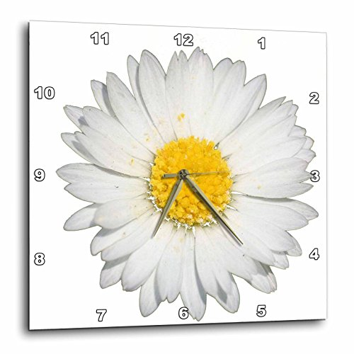 3D Rose Close up of a Beautiful Yellow and White Daisy Flower Isolated Wall Clock, 15