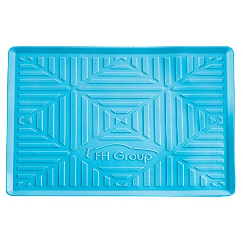 FH Group FH3011LIGHTBLUE Light Blue Silicone Anti-slip Dash Mat (for Smartphones IPhone Plus Galaxy Note Coin Grip Color) (2009 Nissan Altima Key Light On Dash)