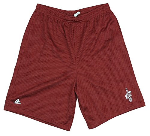 Cleveland Cavaliers NBA Men's Basketball Mesh Shorts, Red (Medium)