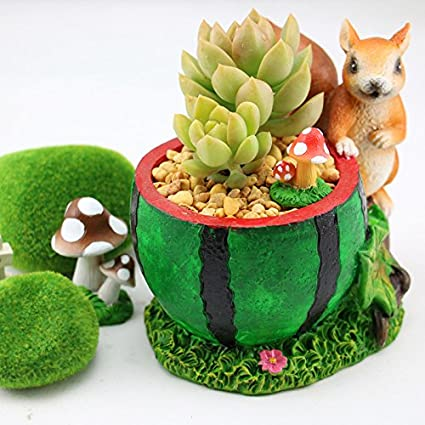 Garden Decorations Outdoor M And F 1PC Cartoon Adorable Rustic Squirrel Watermelon Design Plant Flower