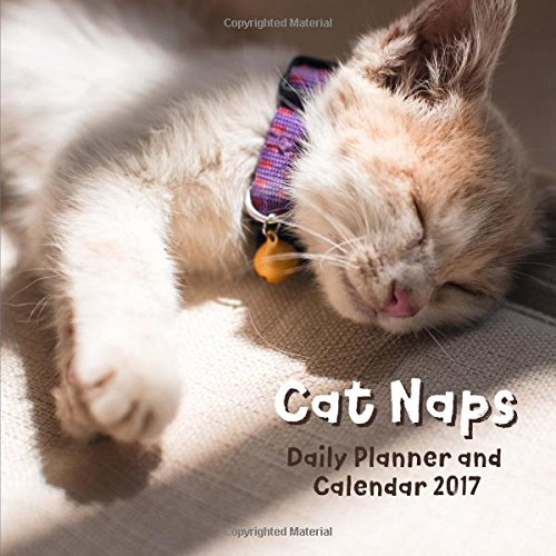 Download Cat Naps Daily Planner and Calendar 2017 PDF