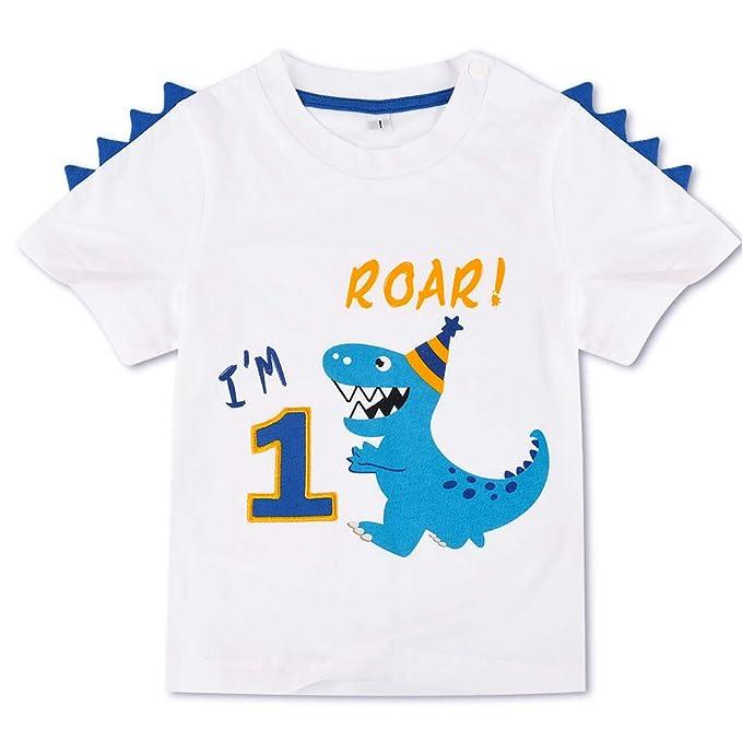 AMZTM Dinosaurio Camiseta de Cumpleaños - 1er Cumpleaños ...