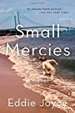 Small Mercies: A Novel