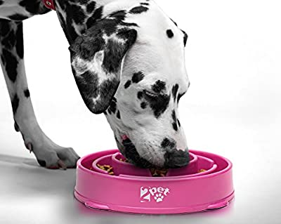 2PET Slow Feed Dog Bowl Slowly Bowly Fun Interactive Dog Dish Fast Eaters. Prevent Bloating. Fun to Use Dog Bowl. Cat Feeder Friendly. [Skid Protection Upgraded] from 2PET