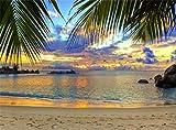 Leowefowa Vinyl 9X6FT Seaside Sand Beach Backdrop Tropical Coconut Tree Sunset Scene Photography Background Kids Adults Summer Holiday Tourism Wedding Wallpaper Photo Studio Props