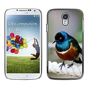 TopCaseStore / la caja del caucho duro de la cubierta de protección de la piel - Brown Sea Nature Cute Small - Samsung Galaxy S4 I9500