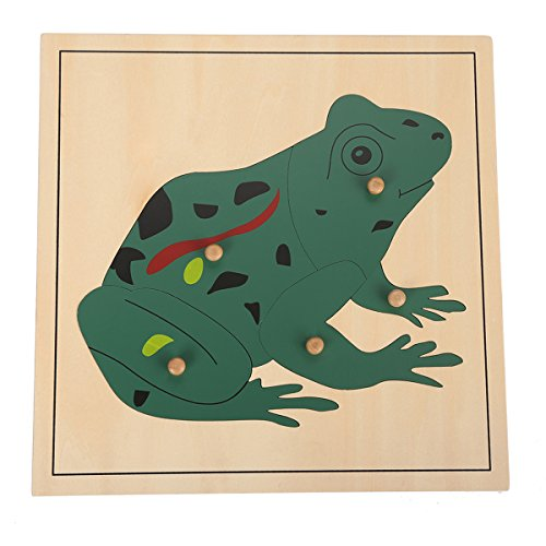 Joy Frog (LEADER JOY Montessori Nature Materials Frog Puzzle for Early Preschool Learning Toy)