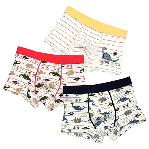Boys Boxer Briefs Shorts Striped Dinosaur Toddler Underwear for Little Boys 6-8 Years 3 Pack