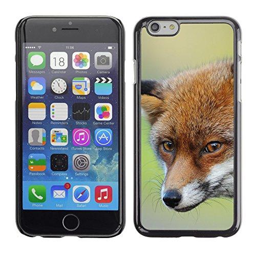 """Premio Sottile Slim Cassa Custodia Case Cover Shell // F00007726 Renard // Apple iPhone 6 6S 6G 4.7"""""""
