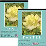 drawing paper for pastels - U.S. Art Supply 9