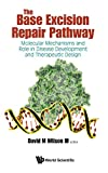 The Base Excision Repair Pathway: Molecular Mechanisms and Role in Disease Development and Therapeutic Design