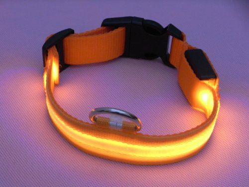 Flashing Lights Collar Orange Medium product image