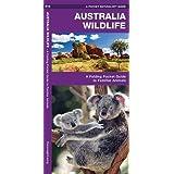 Australian Wildlife: A Folding Pocket Guide to Familiar Species (A Pocket Naturalist Guide)
