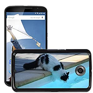Hot Style Cell Phone PC Hard Case Cover // M00111864 Cat Swimming Pool Heat // LG Google Nexus 6