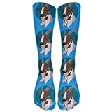 ETsocK Men&Women's Blue Goat Circle Fashion Stocking Socks Athletic Sock Long Sock