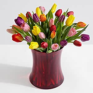 Amazon Com Proflowers 30 Count Multi Colored 30 Multi Colored Birthday Tulips W Free Clear
