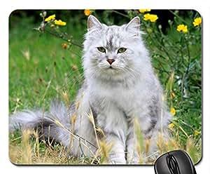 Adorable cat Mouse Pad, Mousepad (Cats Mouse Pad)