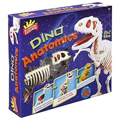 ALEX Scientific Explorer Anatomics Dinosaur: Toys & Games
