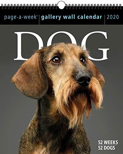 (Dog Page-A-Week Gallery Wall Calendar 2020)