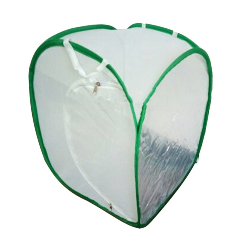 SGerste 2 Colors Praying Mantis Stick Insect Butterfly Cylindrical Pop-up Cage Mesh - White, 40 x 40x 60cm