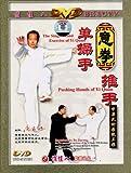意拳:单操手推手(DVD)