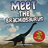 Meet The Brachiosaurus: Fun Facts & Cool Pictures