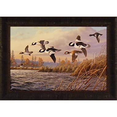 Wind Riders by Terry Doughty 20x28 Bufflehead Ducks Framed Art Print Wall Décor Picture