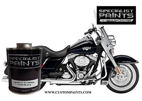Harley Custom Paint - 4