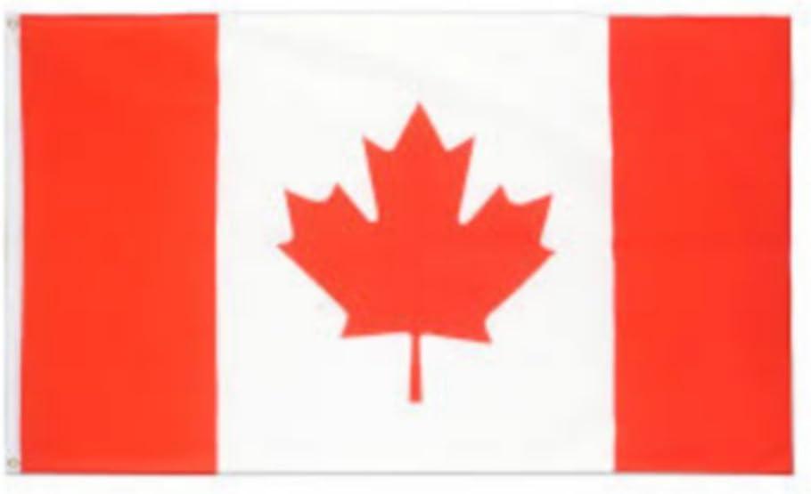 Bandera Banderín Bandera CANADÁ Luxe: Amazon.es: Coche y moto