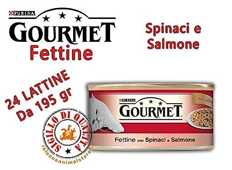 Gourmet rodajas Spinaci mojado y salmón 195 gr Alimento completo para gatos 24 piezas: Amazon.es: Productos para mascotas
