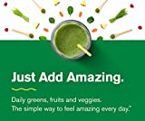 Amazing-Grass-Organic-Plant-Based-Vegan-Protein-Superfood-Powder-Flavor-Pure-Vanilla-11-Servings-12oz-Meal-Replacement-Shake