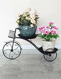 QiangDa Planta de la planta- De estilo europeo de hierro de 2 niveles plataforma de estante de flor, colgante orquídea flor de rack para sala de estar Estantería en maceta creativa cremallera ( Color : Negro )