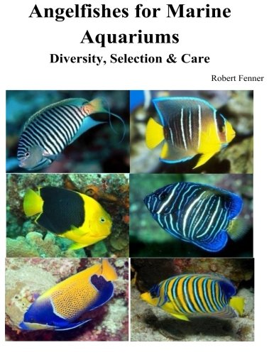 Angelfishes for Marine Aquariums: Diversity, Selection & Care (Marine Angel Fish)