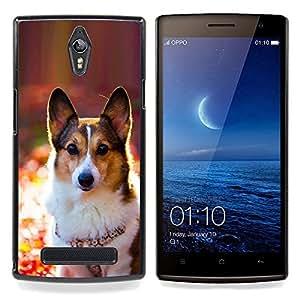 Ihec Tech Corgi Galés Rembroke perro Cardigan / Funda Case back Cover guard / for OPPO Find 7 X9077 X9007